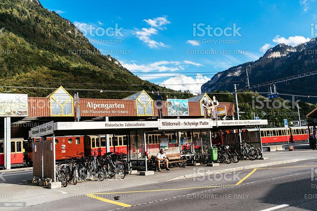 Wilderswil, Switzerland stock photo
