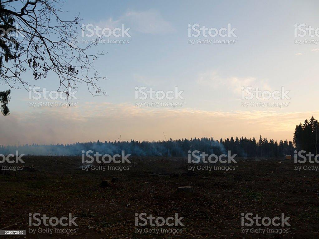 wildfire 001 stock photo