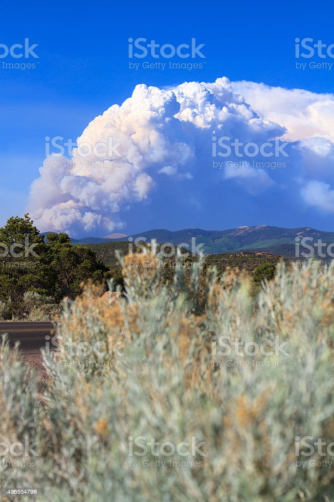 Wildfire Mushroom Smoke Cloud, Blue Sky, Chamisa in Foreground stock photo