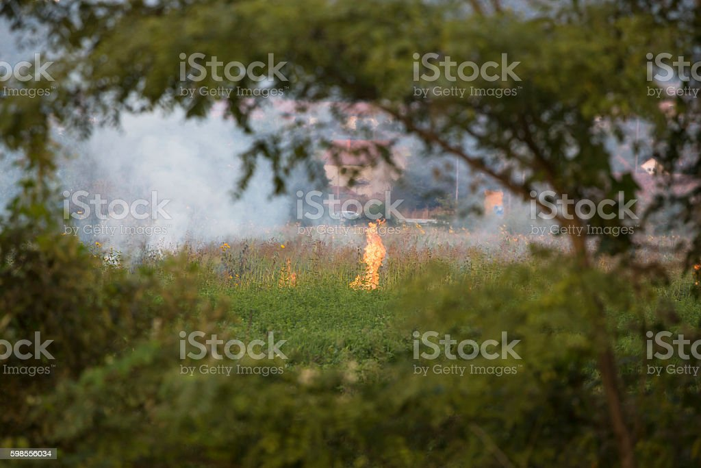 Wildfire started on grass field near human settlement stock photo