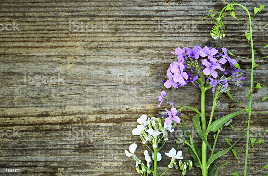 Wildflowers on old grunge wood royalty-free stock photo
