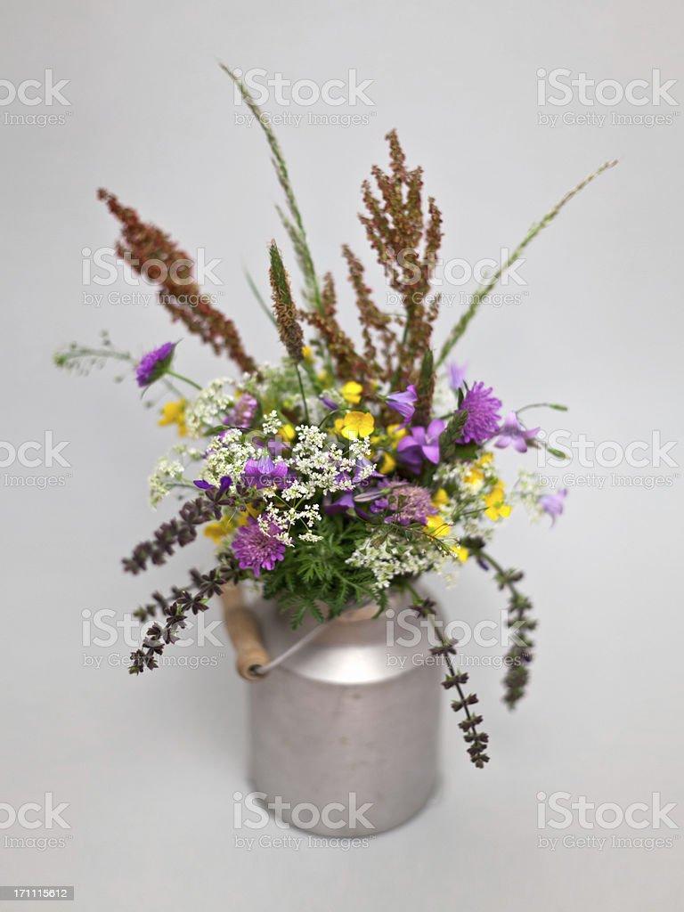 Wildflowers. stock photo