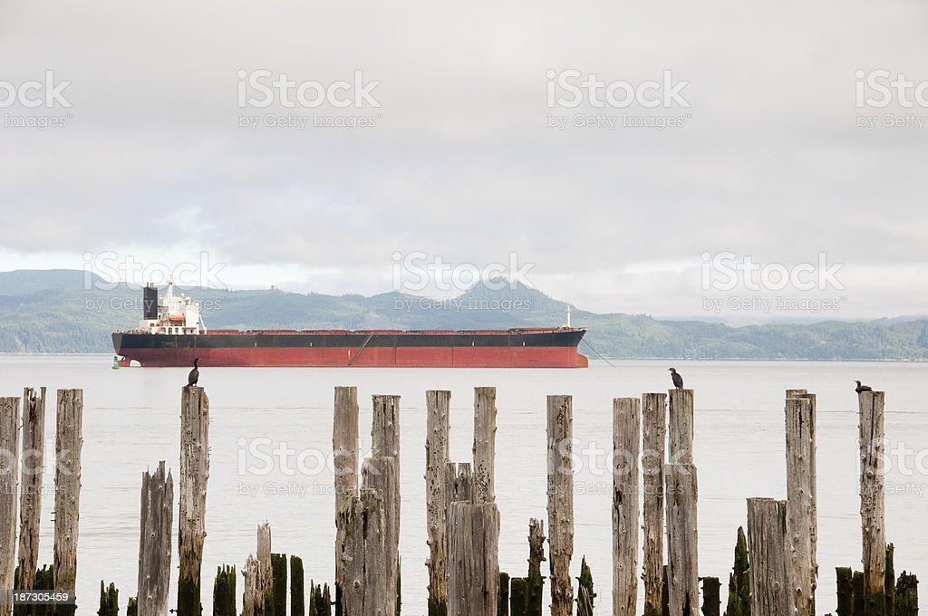Wildlife and Industry stock photo