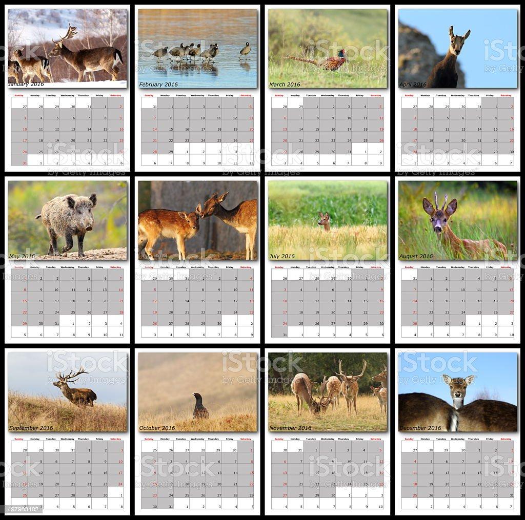 wildlife calendar 2016 stock photo