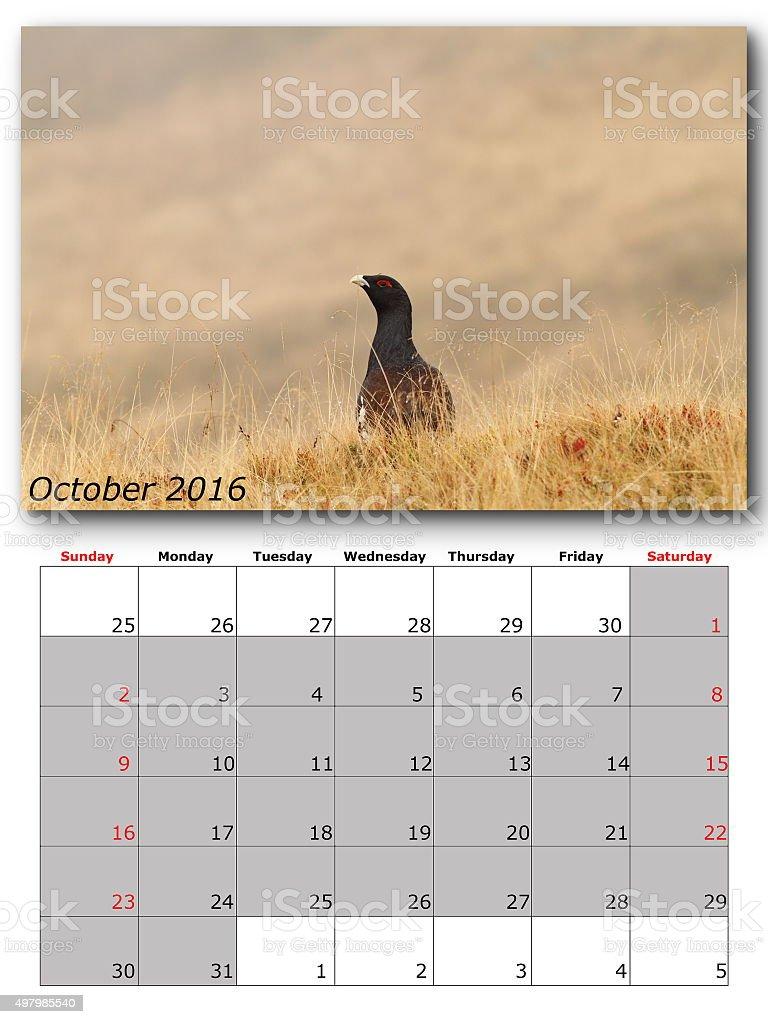 wildlife calendar october 2016 stock photo