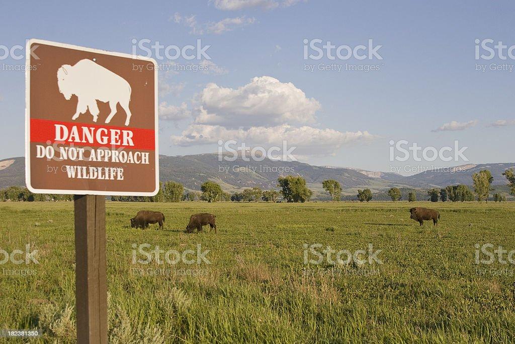 Wildlife Danger sign stock photo