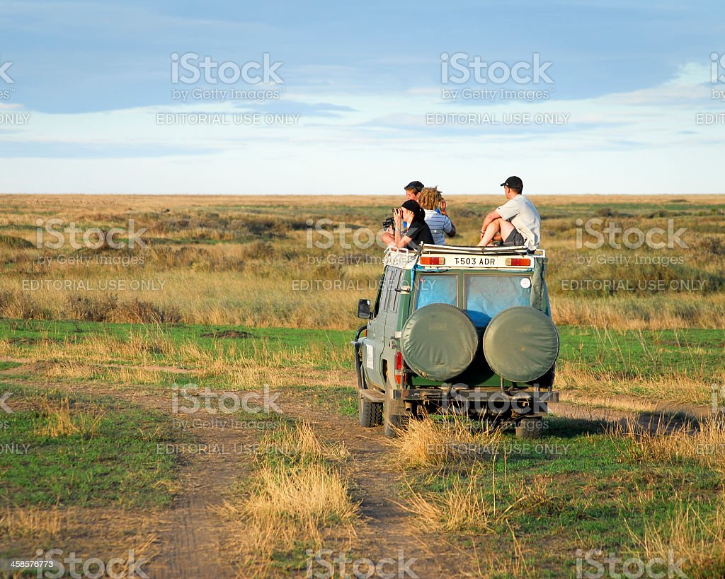 Wildlife jeep safari in the Serengeti National Park,Tanzania royalty-free stock photo
