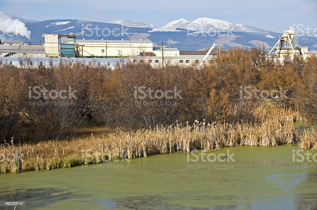 Wildlife preserve and paper mill in Montana royalty-free stock photo
