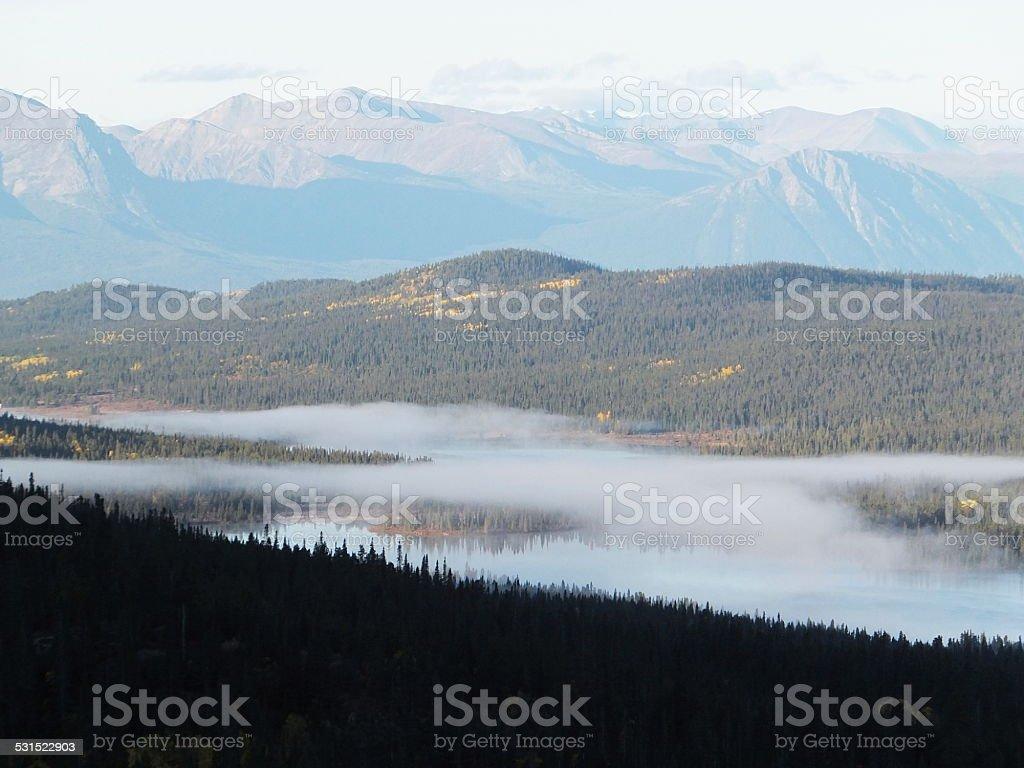 Wildlife reserve stock photo