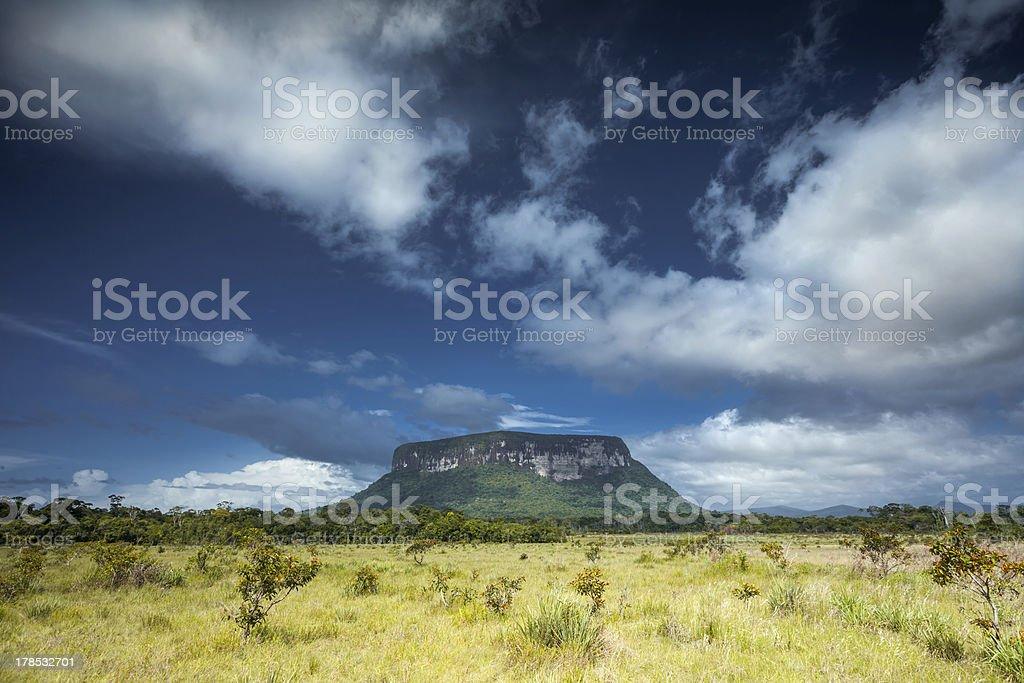 Wildlife space on Highlands of Guiana, Venezuela royalty-free stock photo