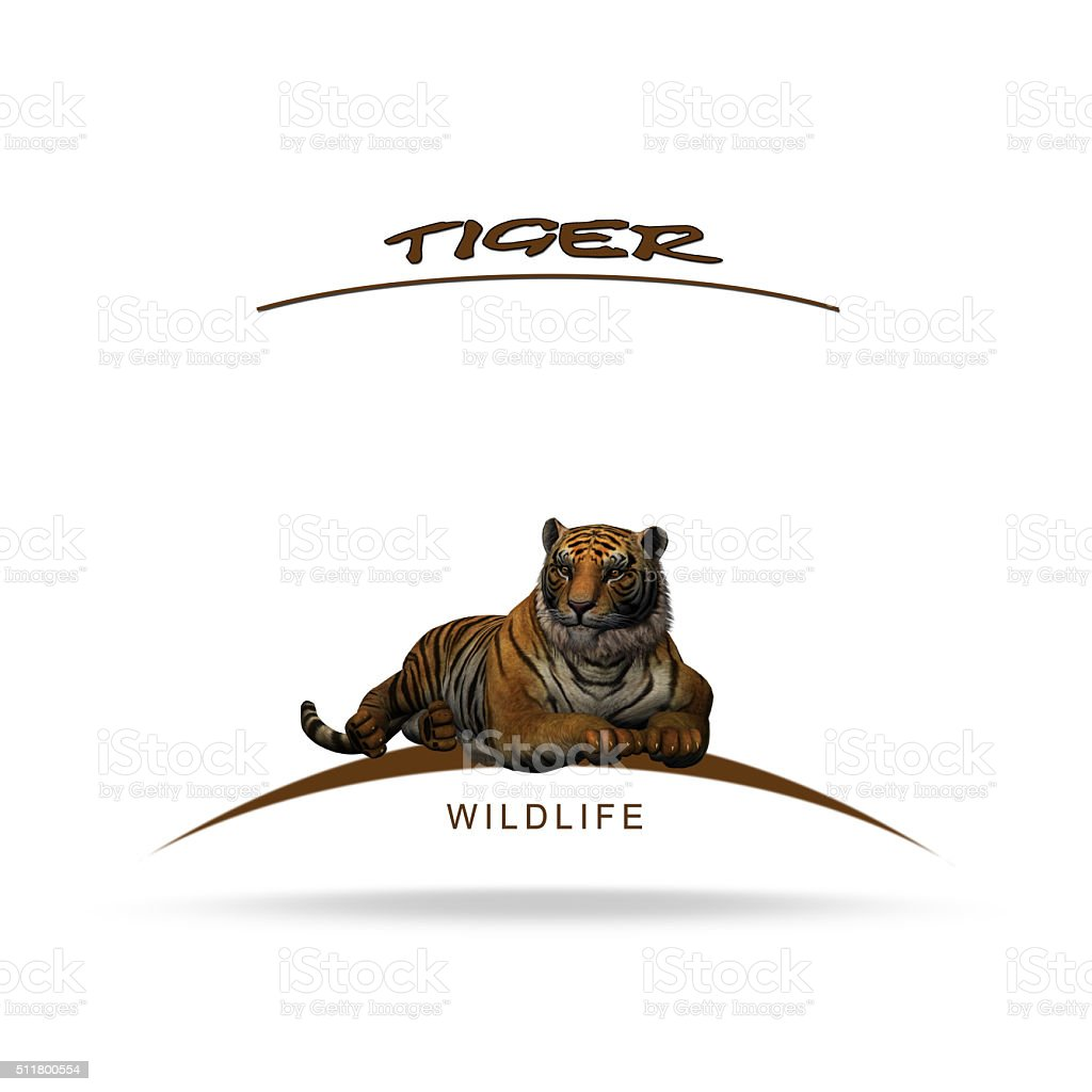 Wildlife - tiger with name lettering stock photo