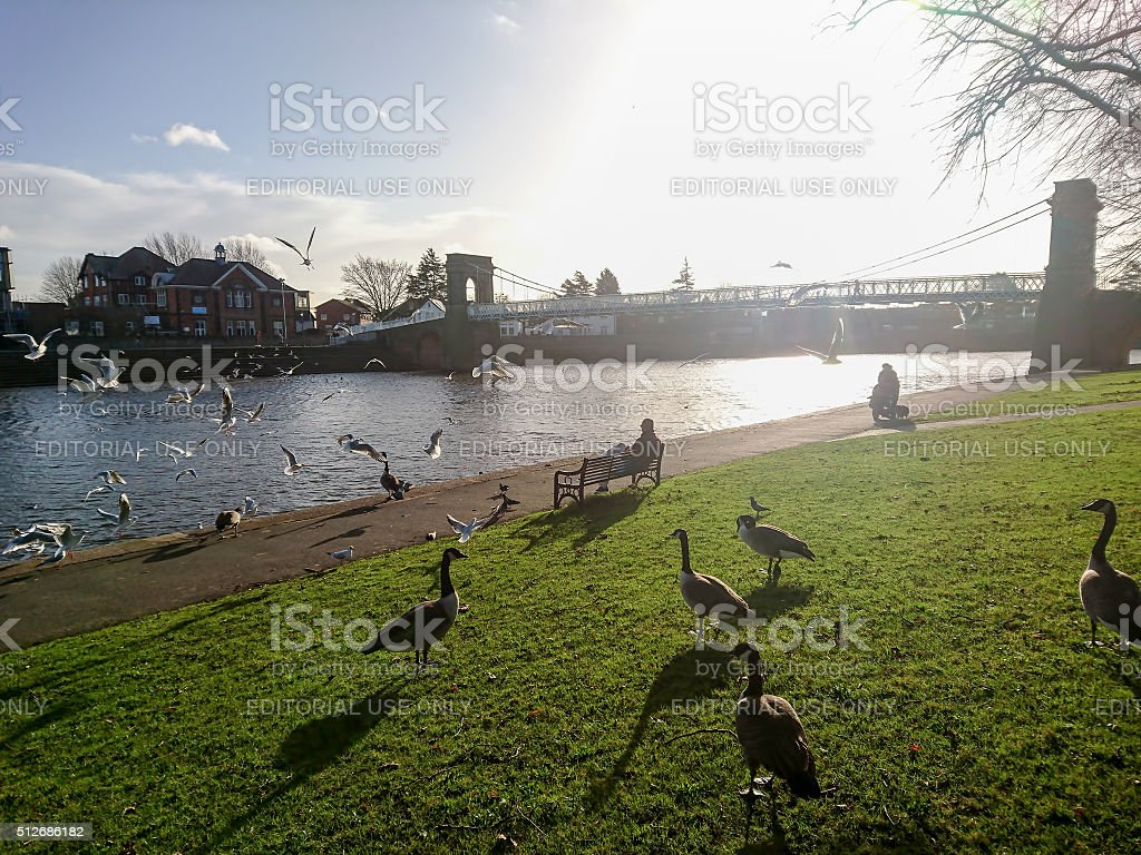 Wilford Suspension bridge over the River Trent. stock photo