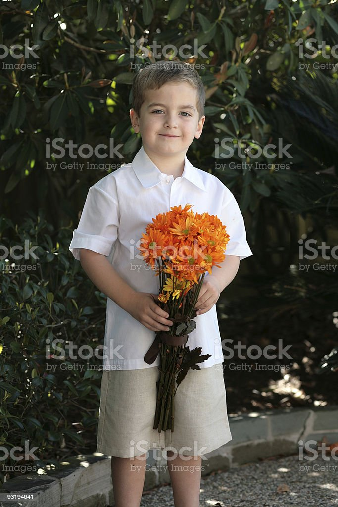 Will you be my valentine? stock photo