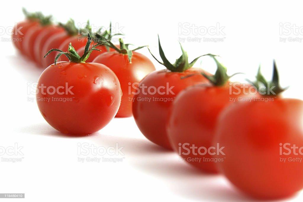 Willful tomato stock photo