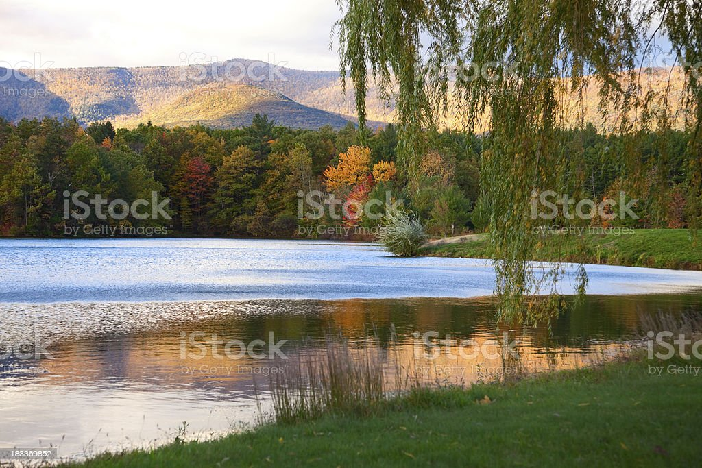 Willow and Autumn Reflections in the Catskill Mountains Lake stock photo