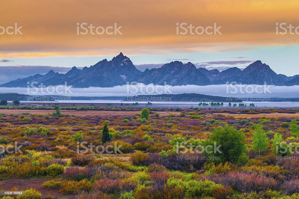 Willow Flats - Grand Teton stock photo