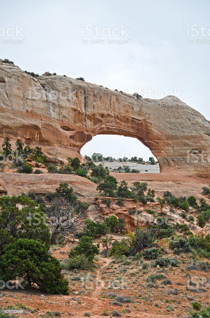 Wilson Arch stock photo