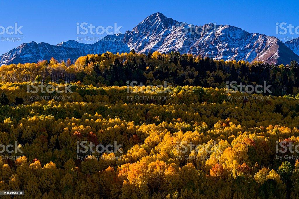 Wilson Peak in Telluride Colorado with Brilliant Aspen Fall Colo stock photo