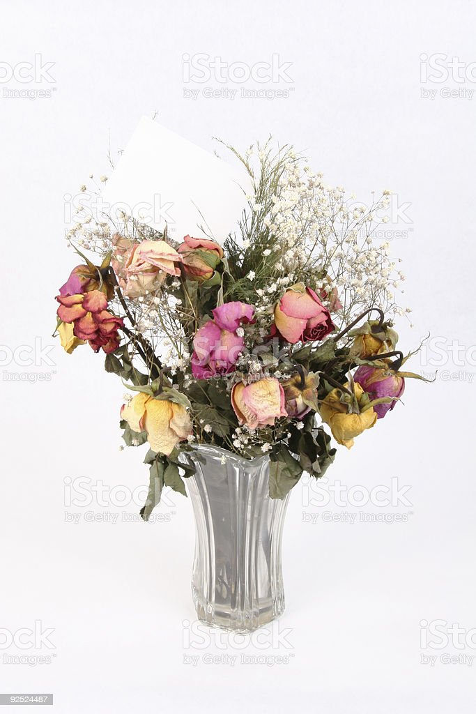 Wilted Romance W Blank Card 1 royalty-free stock photo
