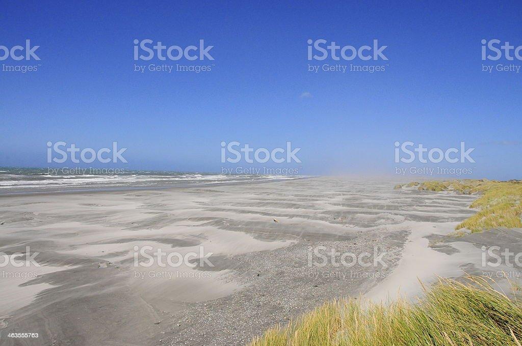 Vento, areia foto royalty-free