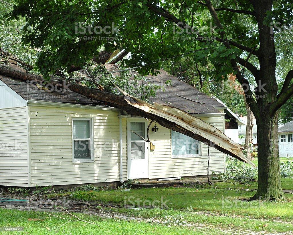 wind damage stock photo