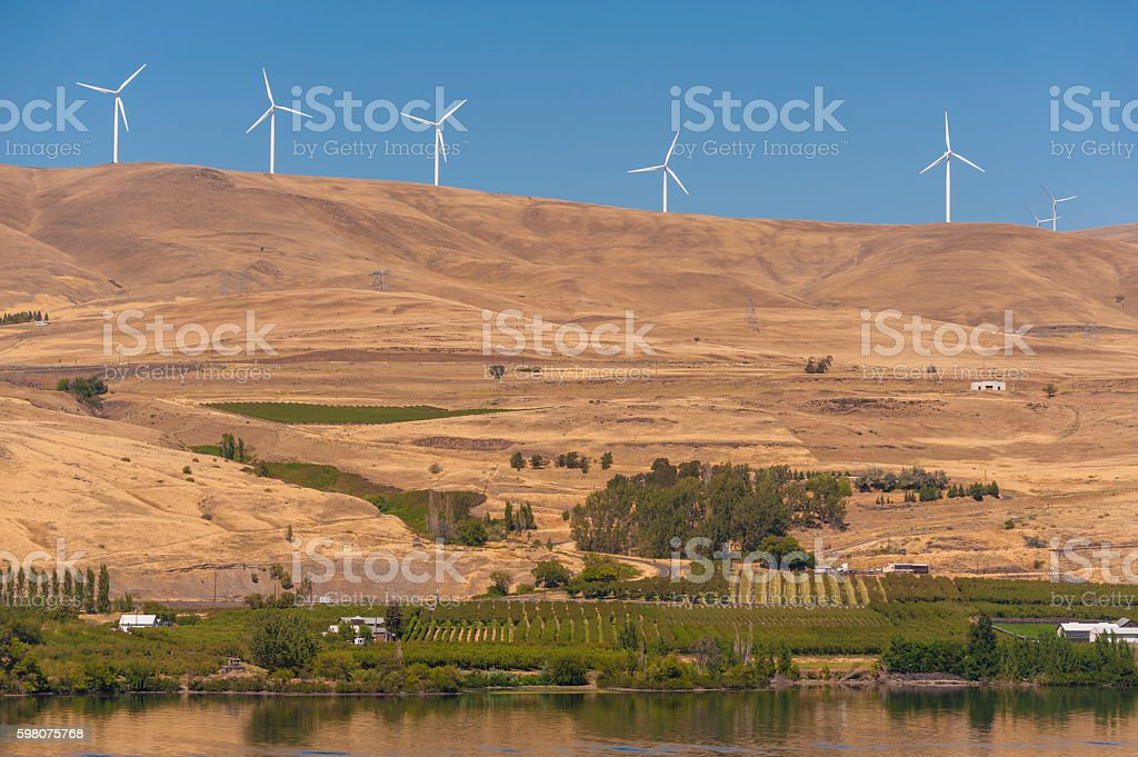 Wind Farm Along the Columbia River stock photo