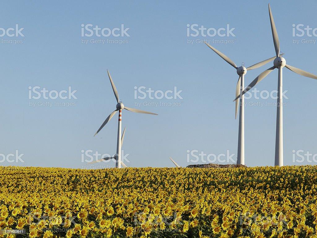 wind farm nature turbines energy electric power royalty-free stock photo