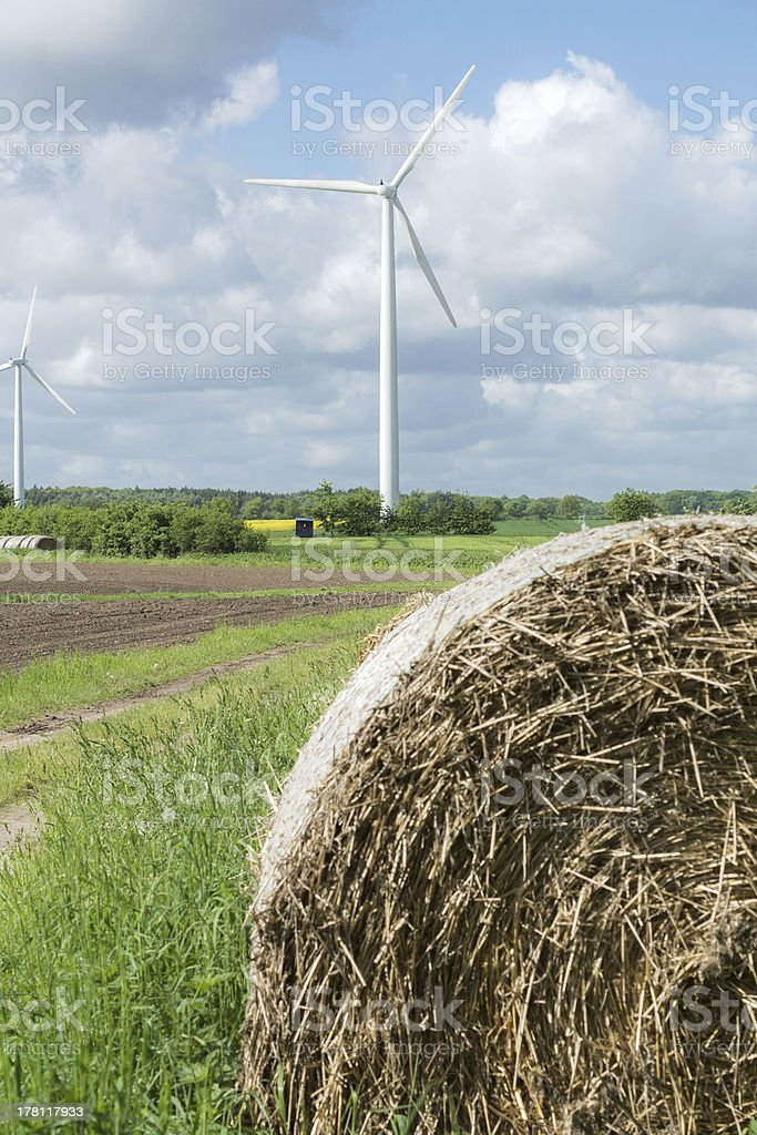 Wind Farm Onshore royalty-free stock photo