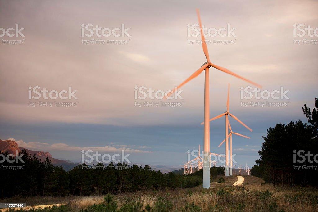 wind farm. stock photo
