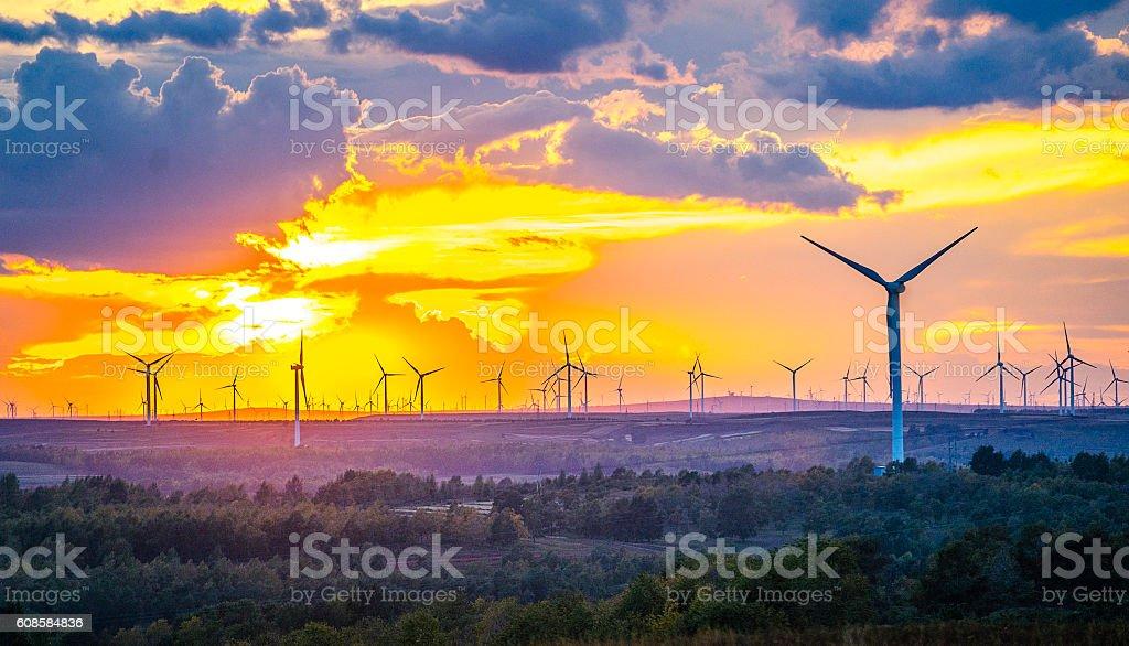 Wind Generator Turbines stock photo