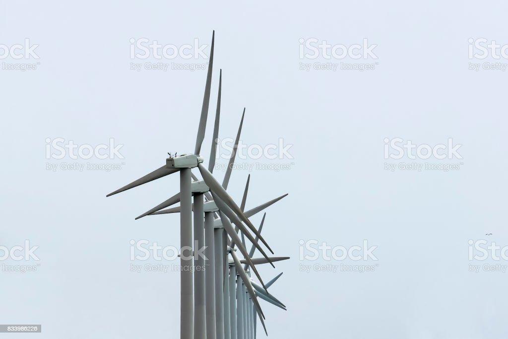 wind generators against the grey sky stock photo