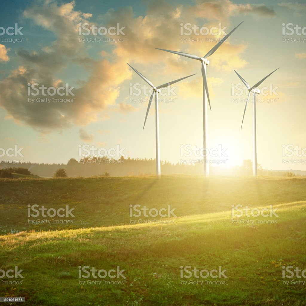 Wind generators turbines on sunset summer landscape stock photo