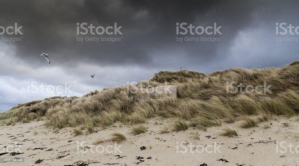 Wind stock photo