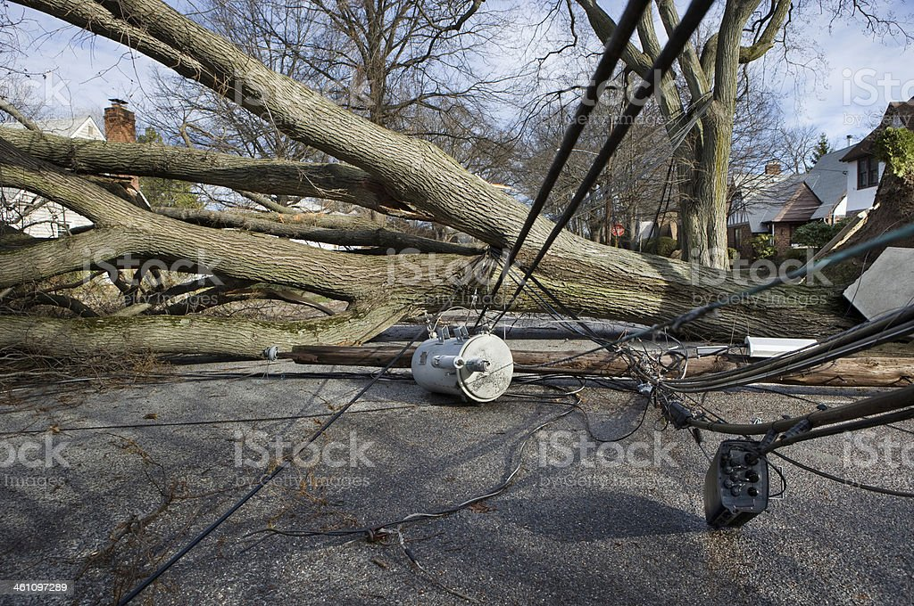 Wind storm damage stock photo