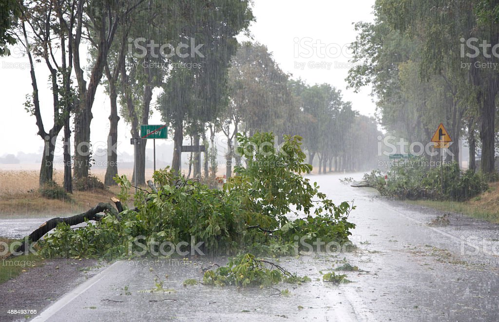 Wind Storm Damage stock photo