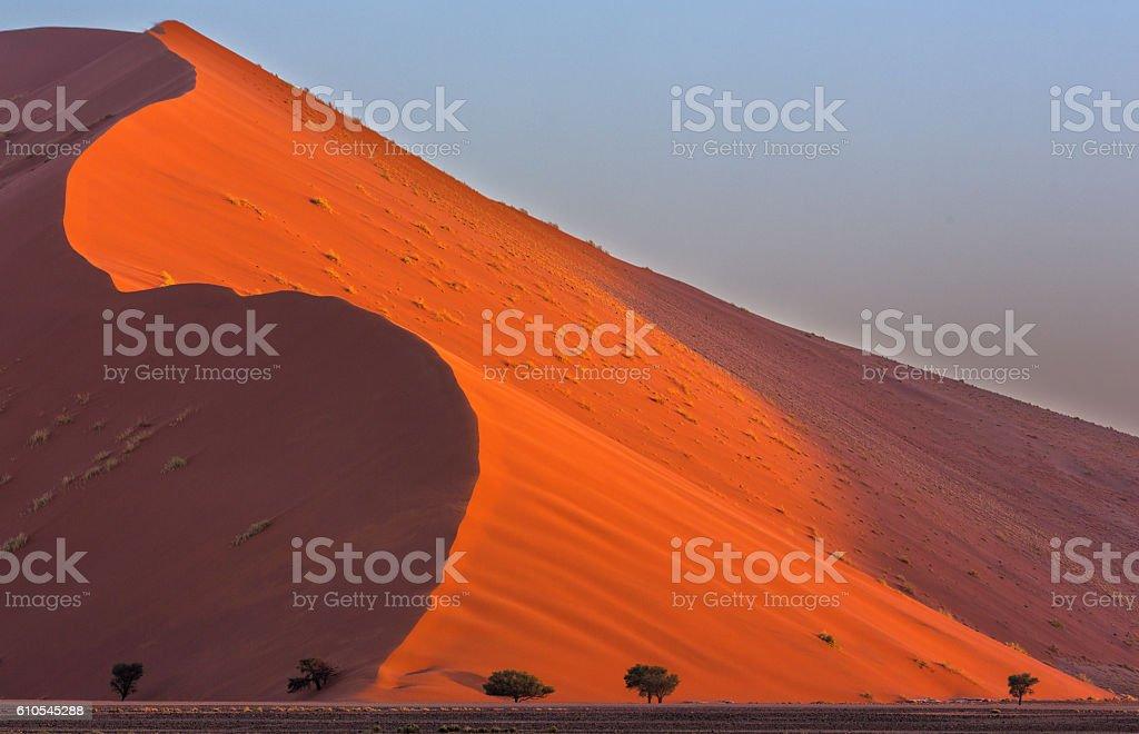 Wind swept dune stock photo
