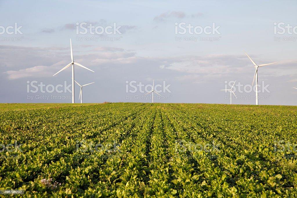 Wind Turbine Clean Energy Wind Farm Power Plant stock photo