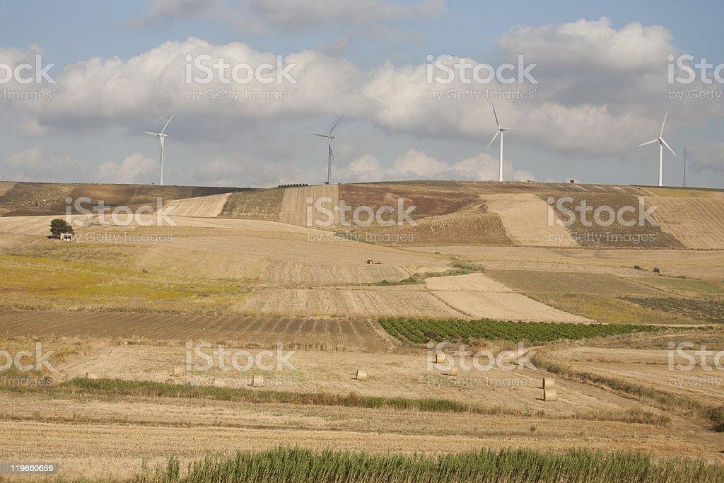 Wind turbine farm near Alcamo in Sicily (Italy) royalty-free stock photo