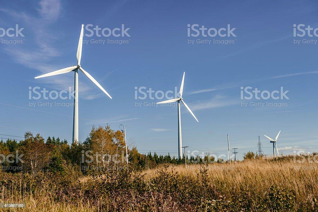 Wind turbine farm over blue sky at sunset stock photo