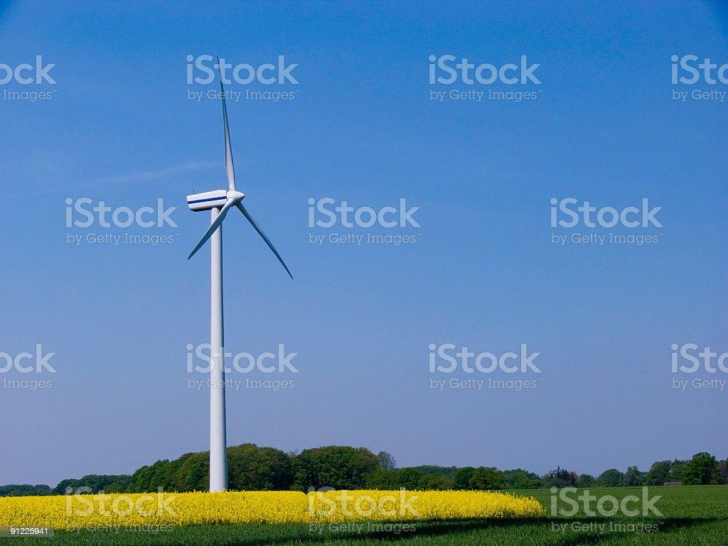 Wind Turbine in a Canola Field royalty-free stock photo