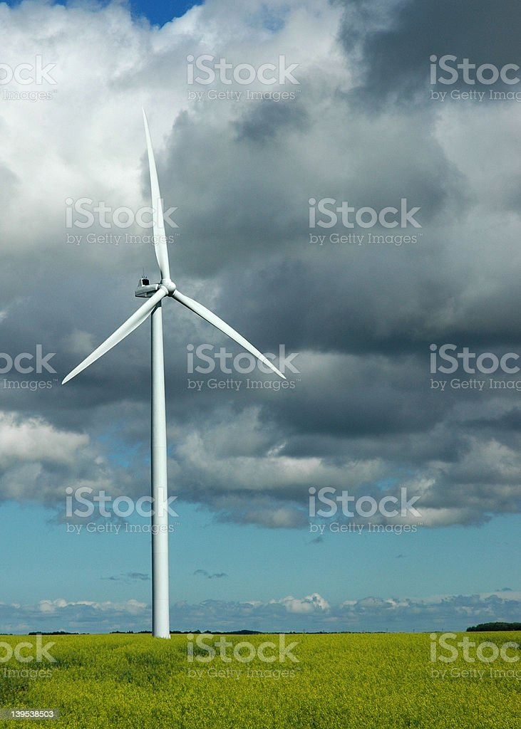 Wind turbine in a field of canola royalty-free stock photo