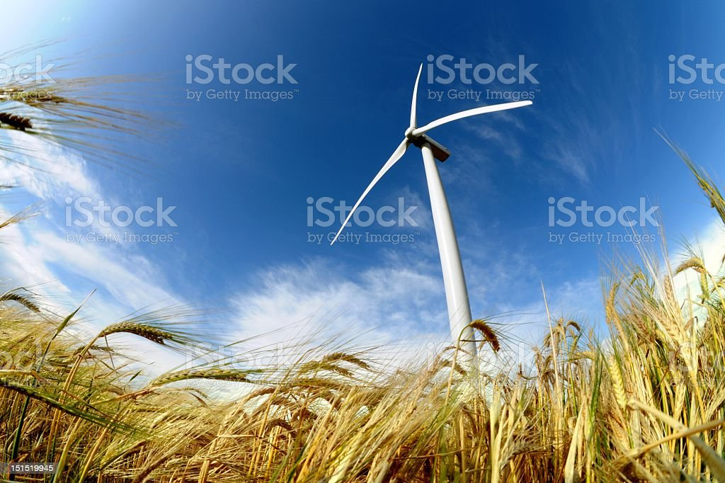 Wind turbine isolated on a field with sky royalty-free stock photo