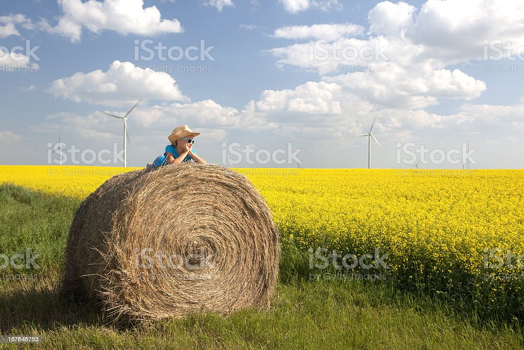 Wind Turbine royalty-free stock photo