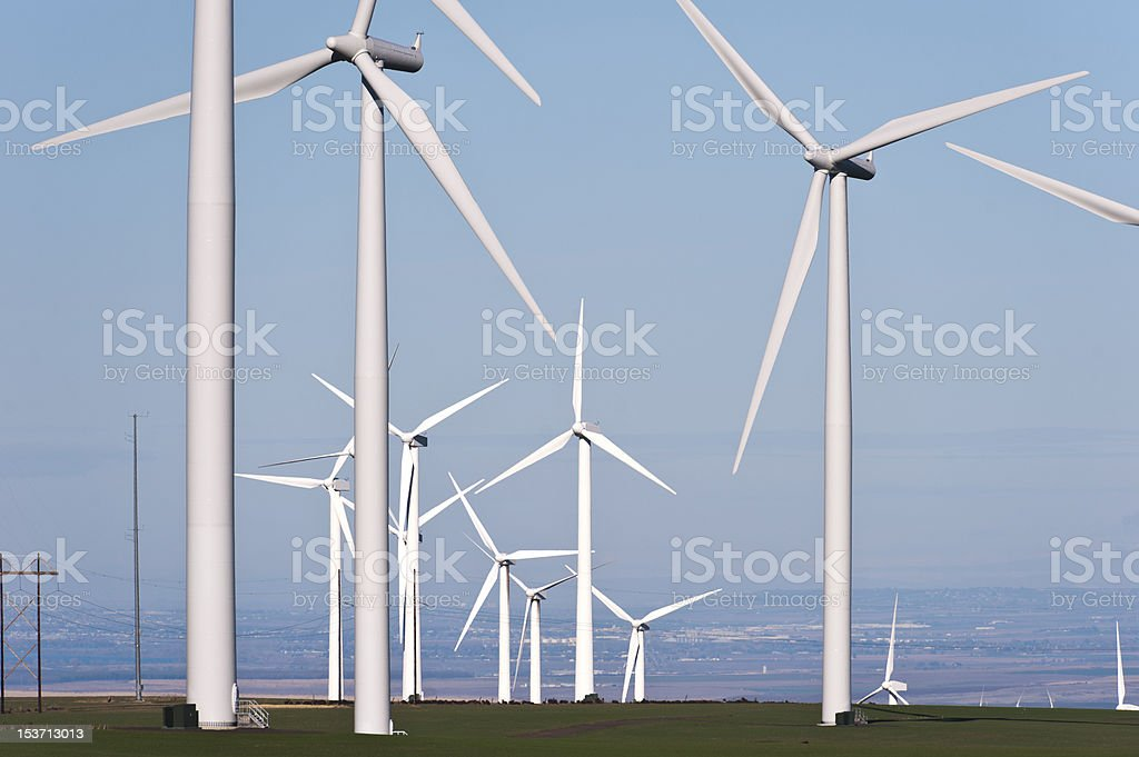 Wind turbine with wheat stock photo
