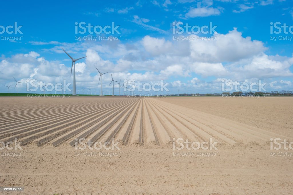 Wind turbines along a plowed field in spring stock photo