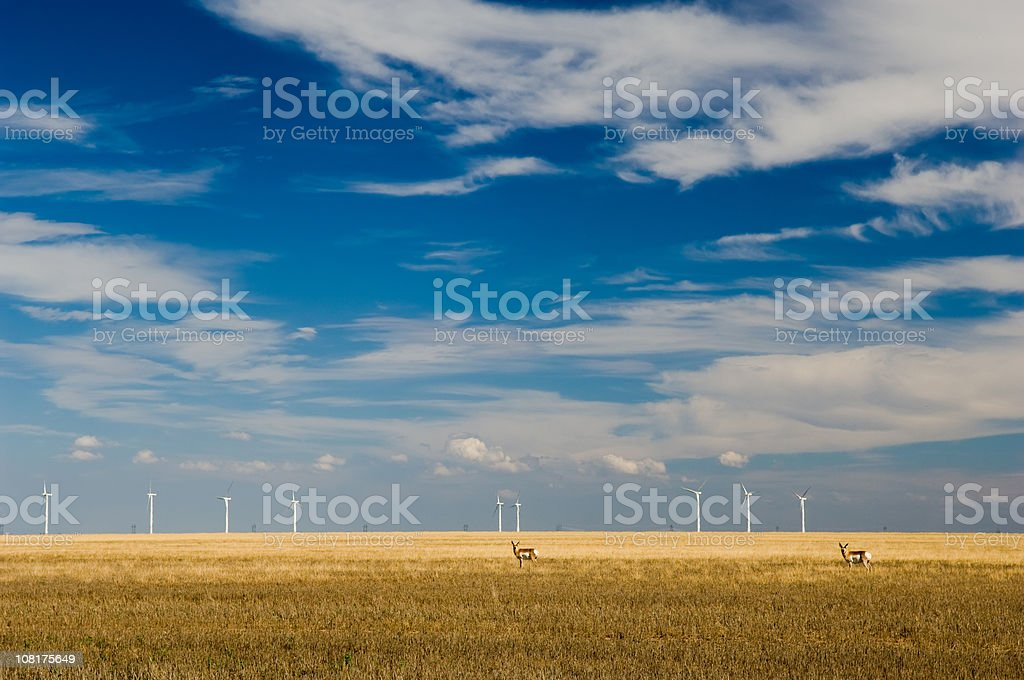 Wind Turbines and Antelope in Large Field royalty-free stock photo