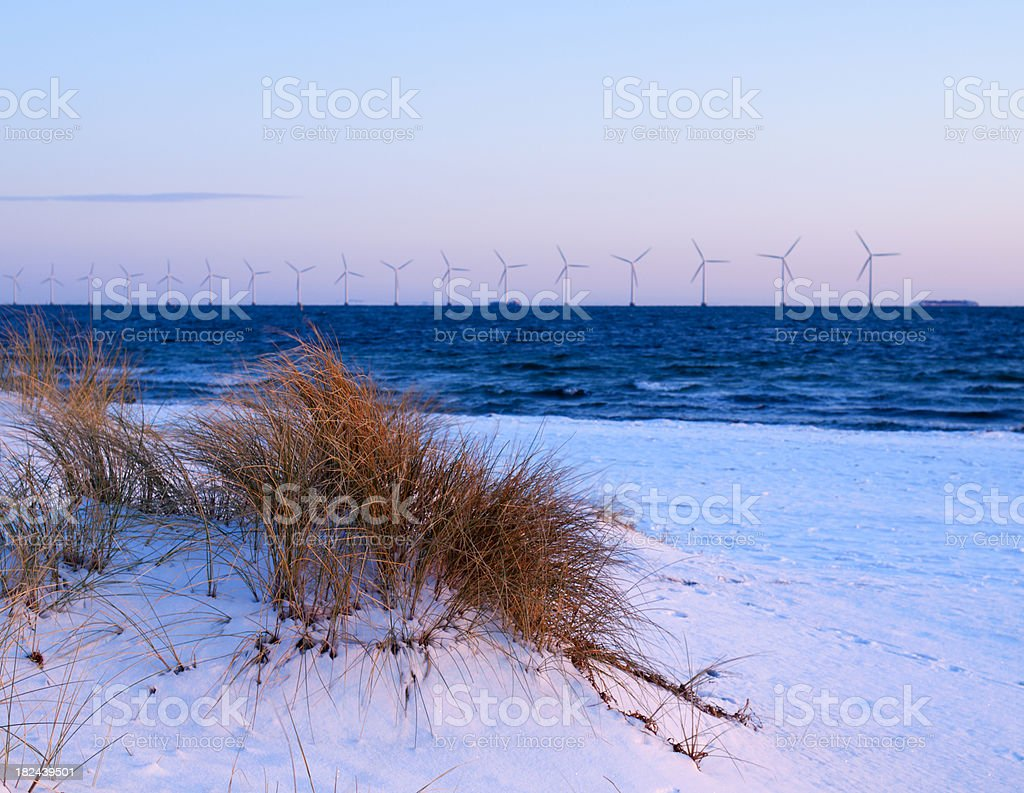 Wind turbines and beach royalty-free stock photo