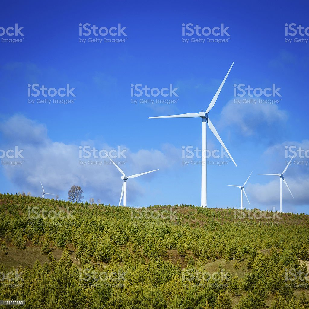 Wind Turbines and forest in Inner Mongolia royalty-free stock photo