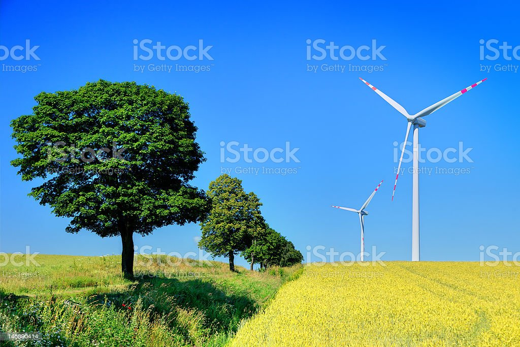 wind turbines and trees royalty-free stock photo