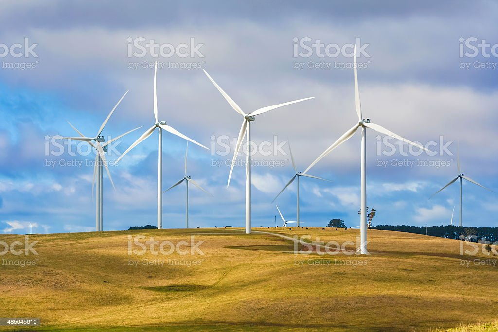 Wind turbines creating renewable energy on cattle farm stock photo